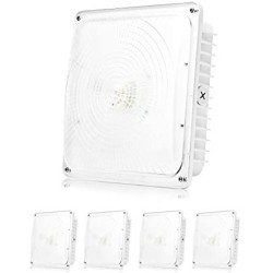 Parmida (4 Pack) LED Canopy Light, 45W, 0-10V Dimmable, 5200lm, 110-277VAC, IP65 Waterproof, DLC-Qualified & ETL-Listed, 5000K (Day Light), 9.6