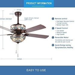 RainierLight Crystal Ceiling Fan Lamp LED Light for Bedroom/Living Room Hotel/Restaurant with 5 Premium Wood Reversible Blades Remote Control 52 Inch …